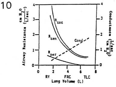 Mechanics of breathing lung volume ccuart Image collections